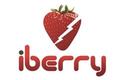 iBerry logo